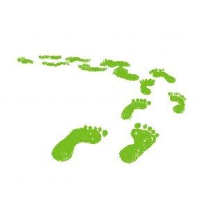 green steps on white background illustration vector famqstudiolab