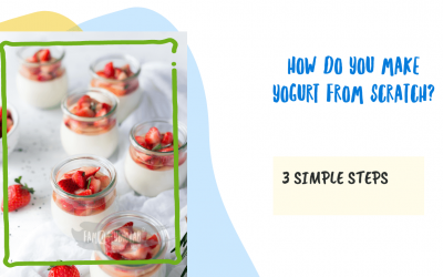 How Do You Make Yogurt From Scratch at home with just 3 Easy Steps?